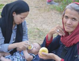 Video: campamento de refugiados en el parque Areos, Atenas